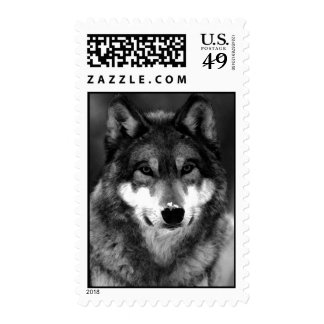 Black & White Wolf Stamp