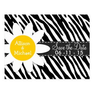Black & White Zebra; Spring Daisy Postcard