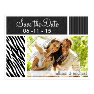 Black & White Zebra Stripes Postcard