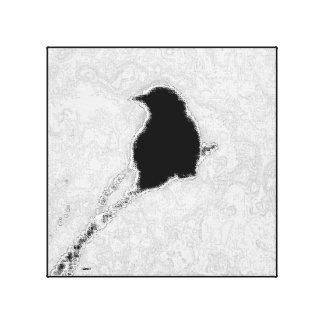 Black & Whitebird Canvas Print