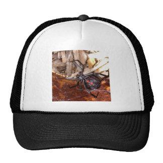 Black Widow Hats