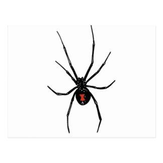 black widow on your postcard