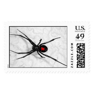 Black Widow Postage Stamp