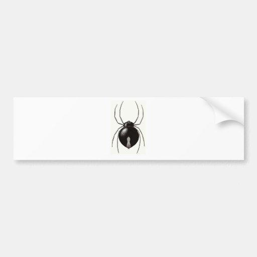 Black Widow Spider -- Original Artwork Bumper Stickers