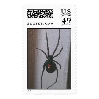Black Widow Spider Postage