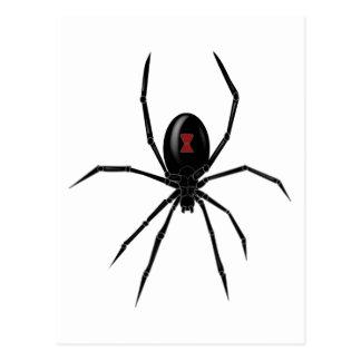 Black WIdow Spider Postcard