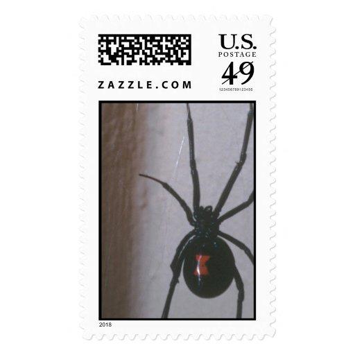 Black Widow Spider Stamps