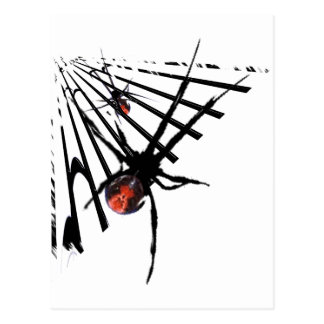 Black Widow Spider T-Shirts and Gifts! Postcard