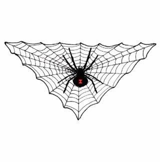 Black Widow Spider Web Photo Sculpture