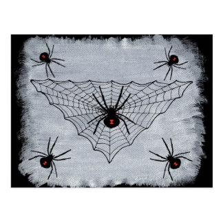 Black Widow Spider Web Postcard