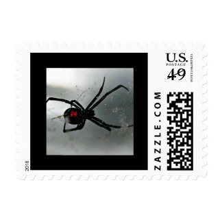 Black Widow Stamps