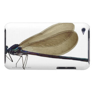 Black-winged damselfly Case-Mate iPod touch case