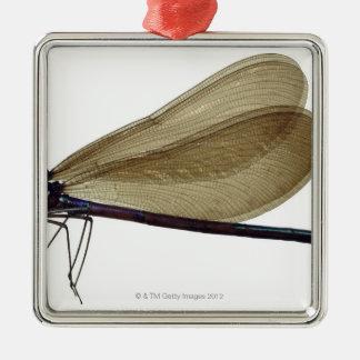 Black-winged damselfly metal ornament