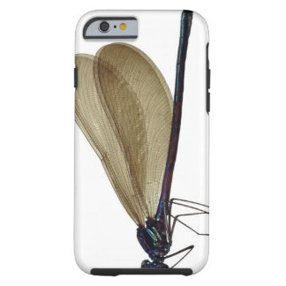 Black-winged damselfly tough iPhone 6 case