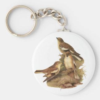 Black-winged Snowfinch Keychain