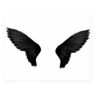 Black Wings Postcard