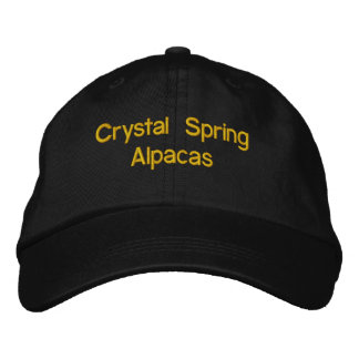 black  with gold lettering cap embroidered baseball cap