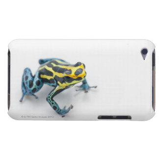 Black, Yellow and Blue Poison Dart Frog Barely There iPod Case