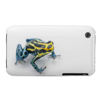 Black, Yellow and Blue Poison Dart Frog iPhone 3 Case