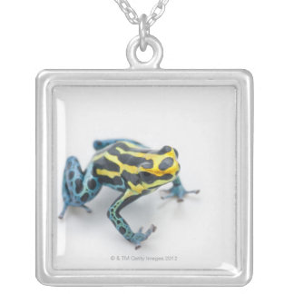 Black, Yellow and Blue Poison Dart Frog Silver Plated Necklace