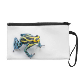 Black, Yellow and Blue Poison Dart Frog Wristlet Purse