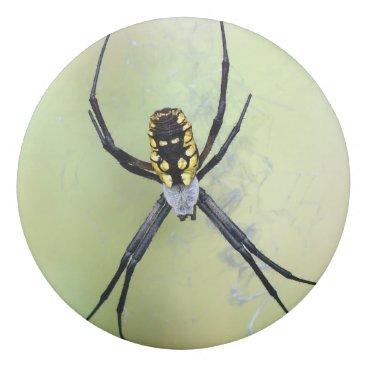 Halloween Themed Black & Yellow Argiope Garden Spider Eraser