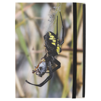 Black & Yellow Argiope Garden Spider iPad Case