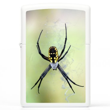 Black & Yellow Argiope Garden Spider Zippo Lighter