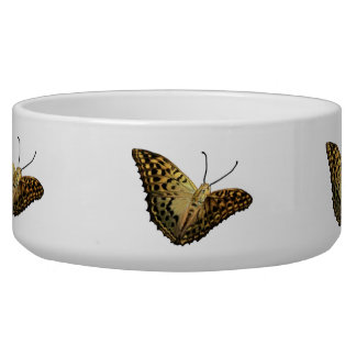 black yellow Butterfly Bowl