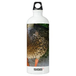 Black & Yellow toned Bird with Orange Feet SIGG Traveler 1.0L Water Bottle