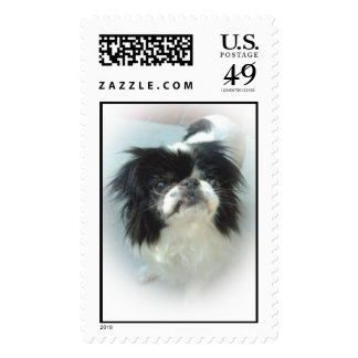 Blackand White Japanese Chin Stamps