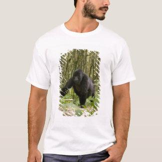 Blackback walking through bamboo forest T-Shirt