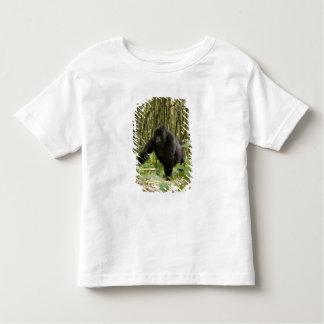 Blackback walking through bamboo forest t shirt
