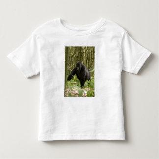 Blackback walking through bamboo forest tees