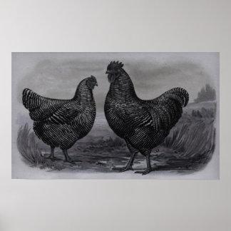 BlackBall Canvas Print