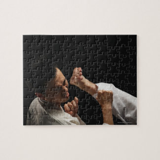 Blackbelt Being Kicked in the Head Puzzle