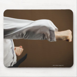 Blackbelt Doing Front Punch Mouse Pad