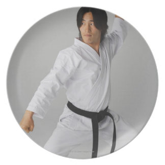 Blackbelt In An At Ready Stance Plates