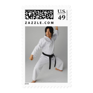 Blackbelt In An At Ready Stance Postage Stamp