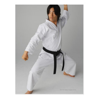 Blackbelt In An At Ready Stance Postcards