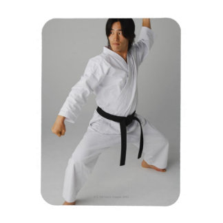 Blackbelt In An At Ready Stance Rectangle Magnet