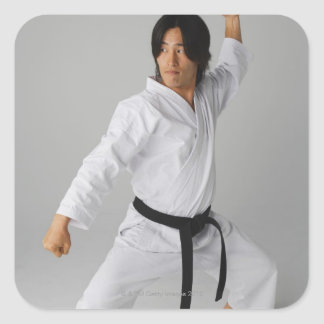 Blackbelt In An At Ready Stance Square Sticker