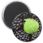 Blackberries 2 Inch Round Magnet