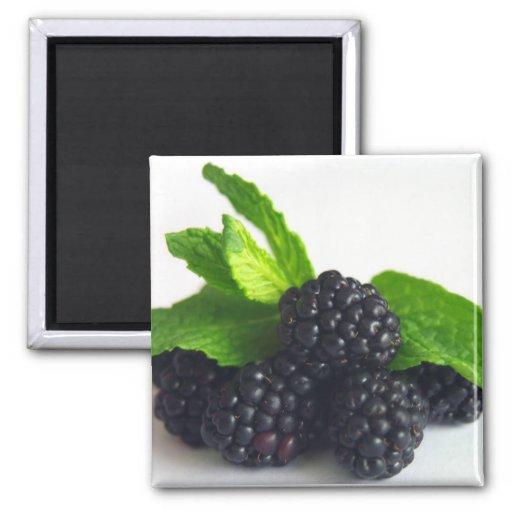 Blackberries and Mint Fridge Magnet