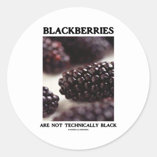 Blackberries Are Not Technically Black Food Humor Round Sticker