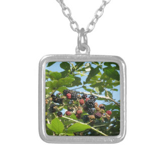 Blackberries bunch not yet fully ripened silver plated necklace