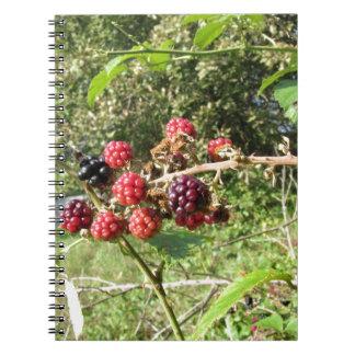 Blackberries bunch notebook