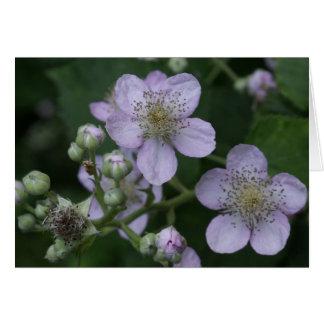 Blackberries flowers card