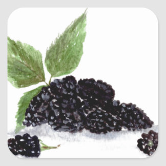 Blackberries fruits watercolour painting square sticker
