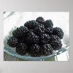 Blackberries in Summer Posters